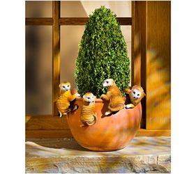 Máte radi kvety a surikaty? Potom sa Vám určite bude páčiť náš nápad na dekoráciu. Roztomilé surikaty